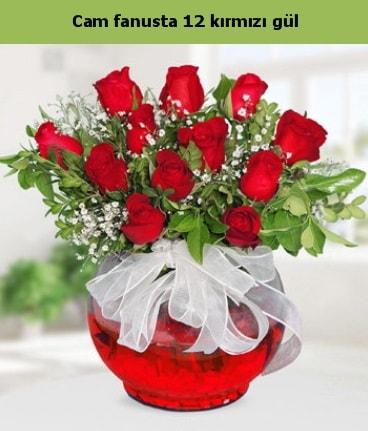 Cam içerisinde 12 adet kırmızı gül  Kıbrıs internetten çiçek siparişi