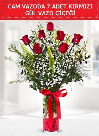Cam vazoda 7 adet kırmızı gül çiçeği  Kıbrıs çiçek gönderme