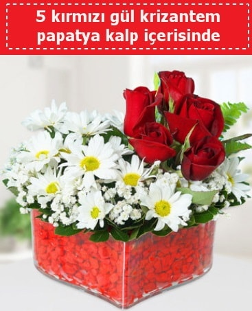 mika kalp içerisinde 5 kırmızı gül papatya  Kıbrıs çiçek satışı