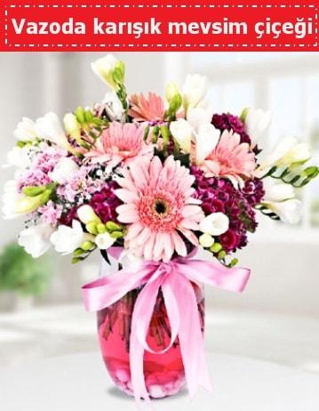 Vazoda karışık mevsim çiçeği  Kıbrıs hediye çiçek yolla