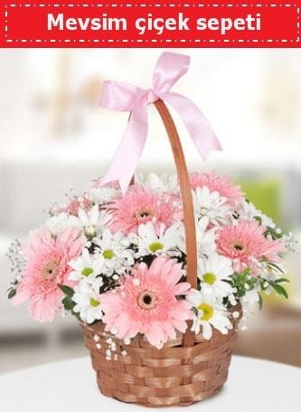 Mevsim kır çiçek sepeti  Kıbrıs hediye çiçek yolla