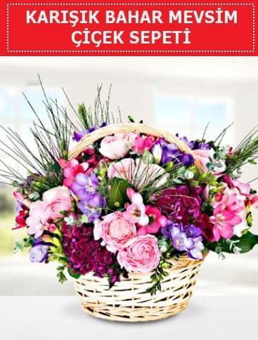 Karışık mevsim bahar çiçekleri  Kıbrıs çiçekçi mağazası