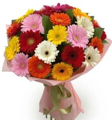 Karışık büyük boy gerbera çiçek buketi  Kıbrıs ucuz çiçek gönder