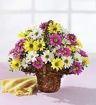 Kıbrıs çiçek siparişi vermek  Mevsim çiçekleri sepeti